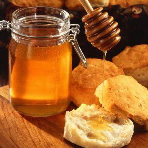 Včelia farma MEDAR jedľová medovica, BIO med, Včelí peľ