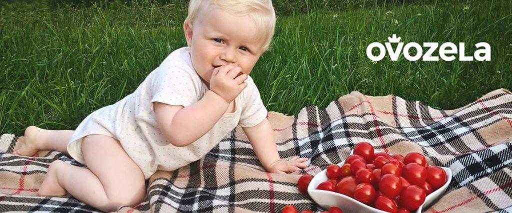 Ovozela združenie nezávislých farmárov zo Slovenska pestovanie rajčin