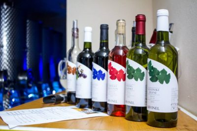 Bovinel neveľké vinárstvo na úpätí Malých Karpát, tradičná receptúra