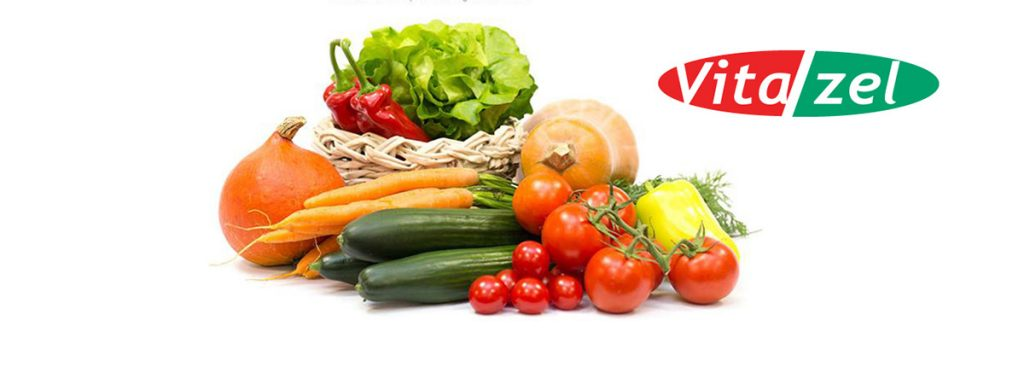Vitazel - producent zeleniny, certifikát GLOBALGAP, člen OVOZELA